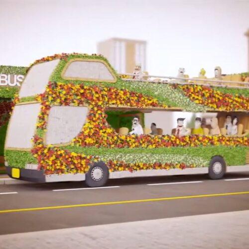 Urban Seed