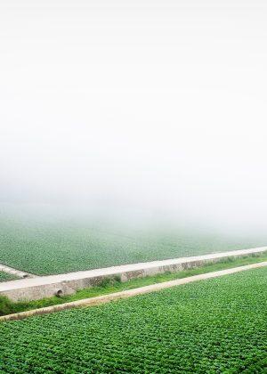 농업활성화사업