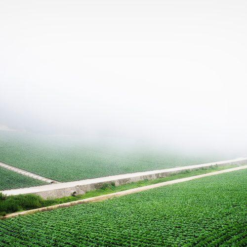 [전국] 2019년 농업실용화기술R&D지원 농식품 판로개척ㆍ마케팅 지원사업 모집 공고(상품력 개선 및 디자인 개발)