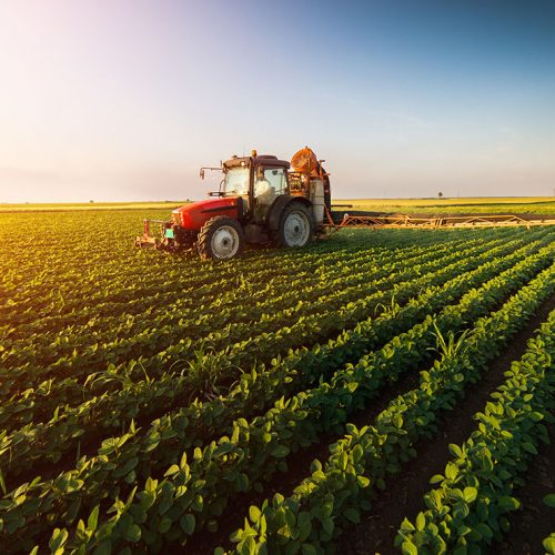 [전국] 2019년 농식품연구성과후속지원사업 국가연구개발성과 후속지원과제 시행계획 공고