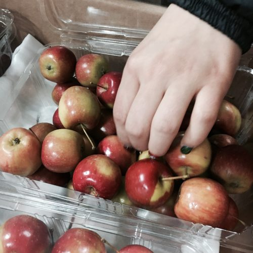 사무실에 작고 귀여운 사과가 도착했습니다.