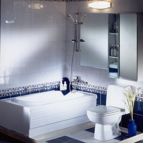 DBR Bathroom (습식/시스템욕실) 단독주택용